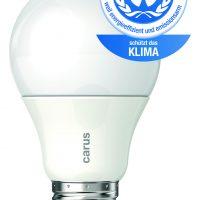 Carus LED-Lampe 600lm Blauer Engel